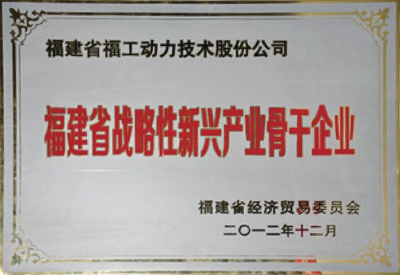 福建省战略性新兴骨干龙8